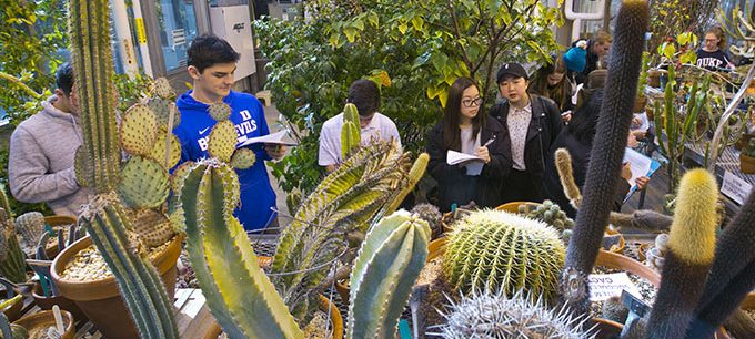students observing cacti in the Duke greenhouse